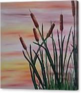 Typha Canvas Print