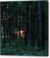 Udell Sunset Canvas Print