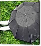 Umbrella Dreams Canvas Print