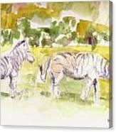 Umfalozi Zebra Canvas Print