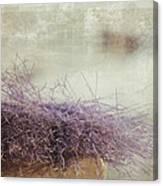 Unbearable Softness Canvas Print
