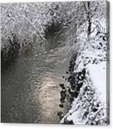 Under A Blanket Of Snow Canvas Print