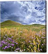 Under The Big Sky Canvas Print