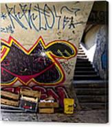 Under The Bridge In Sao Paulo Canvas Print