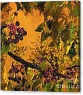 Under The Chokecherry Tree Canvas Print