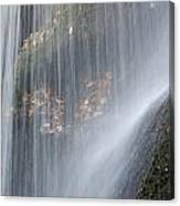 Under The Falls Canvas Print