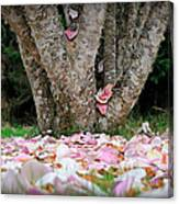 Under The Magnolia Tree Canvas Print