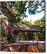 Under The Shadow Of The Tree. Eureka. Mauritius Canvas Print
