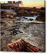 Underground Peek Canvas Print