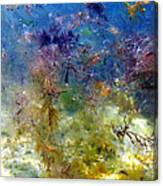 Underwater Abstract. Canvas Print