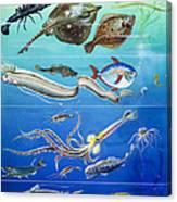 Underwater Creatures Montage Canvas Print