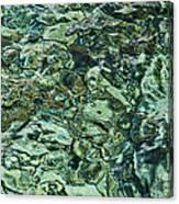 Underwater Rocks - Adriatic Sea Canvas Print