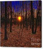 Unenchanted Forest Canvas Print