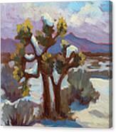 Unexpected Snowfall At Joshua Tree Canvas Print