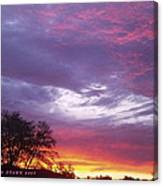 Unforgettable Majestic Beauty Canvas Print