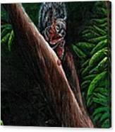 Union Squirrel Canvas Print