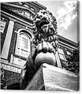 University Of Cincinnati Lion Black And White Picture Canvas Print