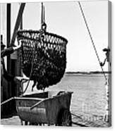 Unloading Fish From Monterey's Wharf Two Circa 1950  Canvas Print