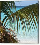Unplugged In Paradise Canvas Print