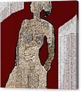 Untitled 220 Canvas Print