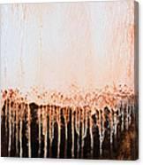 Untitled #31 Canvas Print