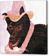Untitled Dog With Hat Canvas Print