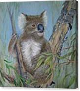 Up A Gum Tree Canvas Print