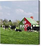 Up Mayo Canvas Print