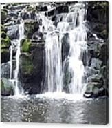 Upper Beaver Falls Canvas Print