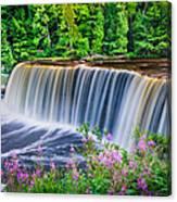 Upper Falls Canvas Print
