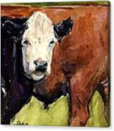 Upper Field Canvas Print