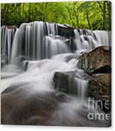 Upper Jonathan Run Falls D300_16557 Canvas Print