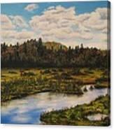 Upper Sacandaga River Canvas Print