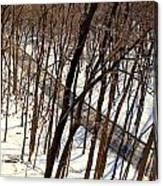 Urban Forest At Dusk Canvas Print