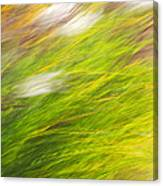 Urban Nature Fall Grass Abstract Canvas Print