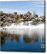 Urban Pond In Snow Canvas Print