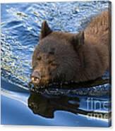 Ursa Mirrored Canvas Print