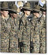 U.s. Marine Corps Female Drill Canvas Print