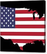 Usa And Flag Canvas Print