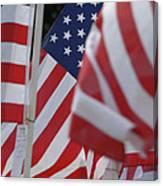 Usa Flags 01 Canvas Print