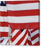 Usa Flags 02 Canvas Print