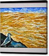 U.s.landscape Canvas Print