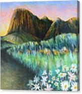 Utah Capital Reef Park Canvas Print