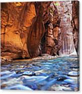 Utah, Zion National Park, Virgin River Canvas Print