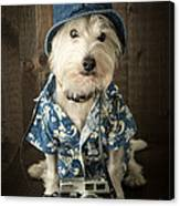 Vacation Dog Canvas Print