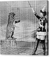 Vallecitas Leopards. Female Animal Canvas Print