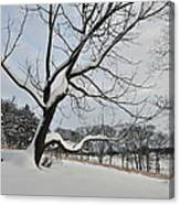 Valley Forge Winter 9 Canvas Print