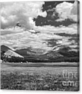 Valley In Yosemite Canvas Print