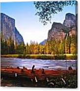 Valley View - Yosemite National Park Canvas Print