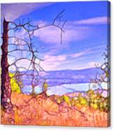Valley Views Canvas Print